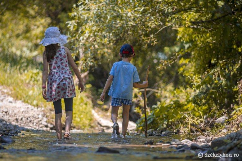 Nyári táborok: ha van rá pénz, széles a választék